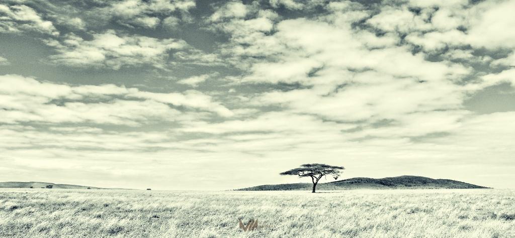 Dwellers Of Tanganyika [part 1]