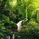 60_iPad_Kilimanjaro Streams_by Mutua Matheka